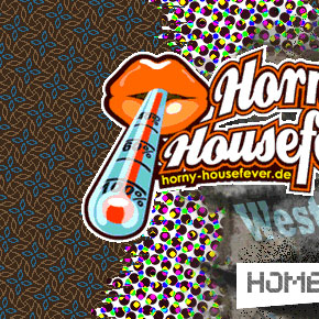 Webdesign - Horny Housefever